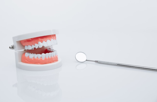Modelo de mandíbula e ferramenta de dentista. conceito de tratamento dentário