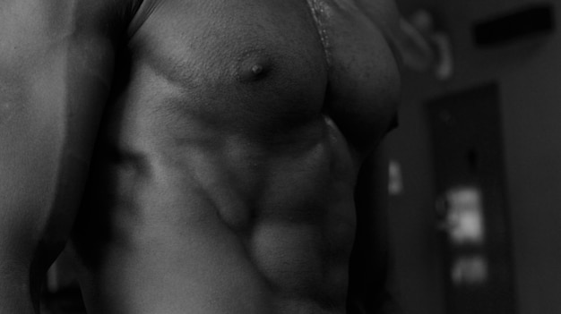 Modelo de tórax abs perfil preto e branco