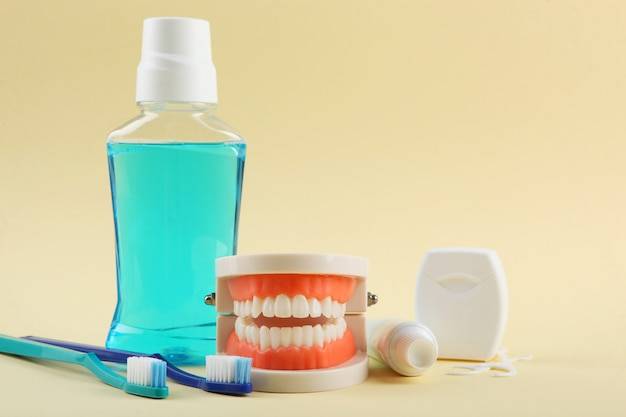 Modelo dentário de dentes e produtos para cuidados dentários em fundo colorido