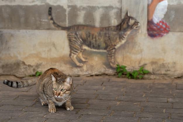 Modelo do gato e uma pintura do gato na parede.