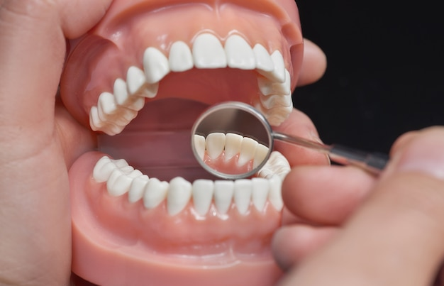Modelo odontológico, observação usando espelho dental