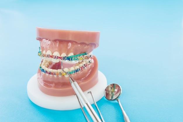 Modelo ortodôntico e ferramenta de dentista sobre o fundo azul
