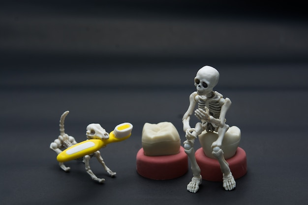 Modelos de dentes de diferentes mandíbulas humanas com esqueleto e cachorro, conceito de dentes de halloween.