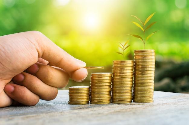 Moeda de dinheiro para o crescimento de seu negócio