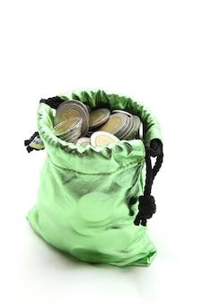 Moeda de riqueza no saco de dinheiro verde isolado no branco