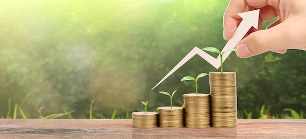 Moedas crescentes na mão. conceito de finanças e investimento