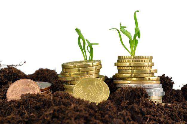 Moedas de euro e conceito de crescimento financeiro de brotos de plantas