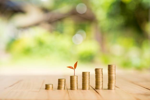 Moedas de ouro e planta com luz verde bokeh no conceito de economia de dinheiro