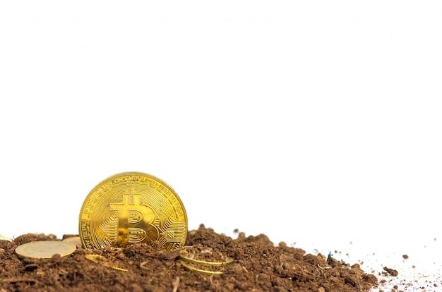 Moedas de ouro ou bitcoin no solo dinheiro virtual
