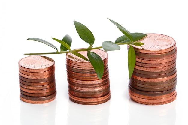 Moedas de um centavo de euro e broto verde