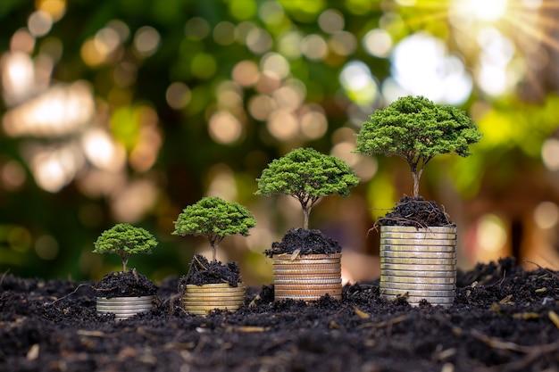 Moedas e árvores são plantadas em pilhas de moedas para finanças e bancos. ideias para economizar dinheiro e aumentar as finanças