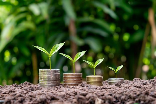 Moedas e colheitas em moedas com conceito de financiamento, investimento e crescimento de dinheiro de fundo verde de borrão.
