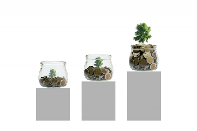 Moedas e planta na garrafa, no crescimento do investimento empresarial e no conceito da economia.