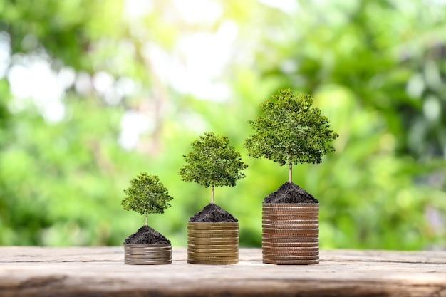 Moedas e plantação de árvores em pilhas de moedas para finanças e ideias bancárias para economizar dinheiro e aumentar as finanças