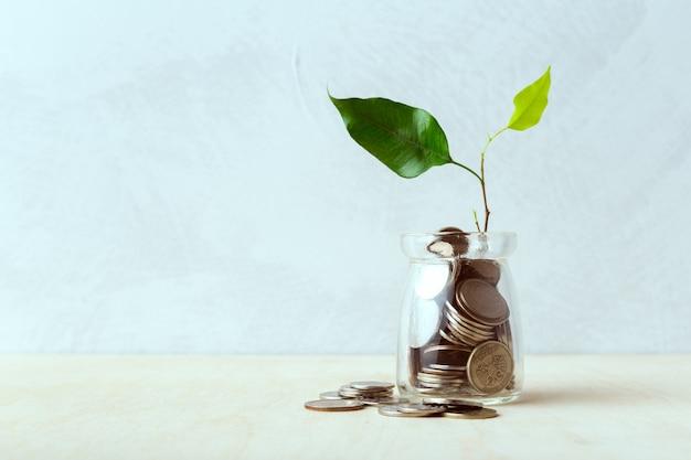 Moedas em garrafas de vidro, idéias de economia de dinheiro
