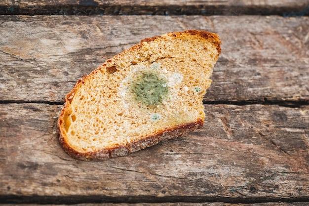 Mofo em uma fatia de pão, deitado sobre uma superfície de madeira.