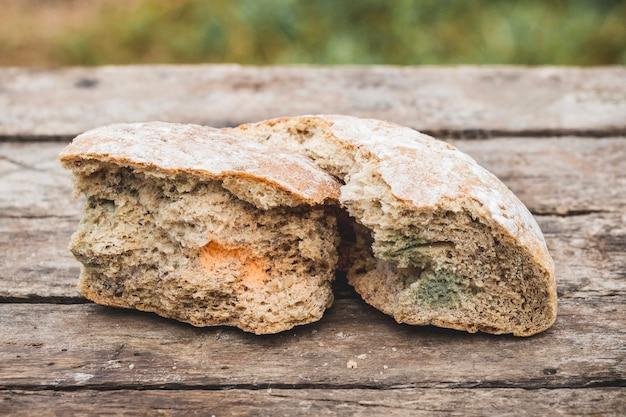 Mofo em uma fatia de pão sobre uma superfície de madeira pão velho coberto de mofo