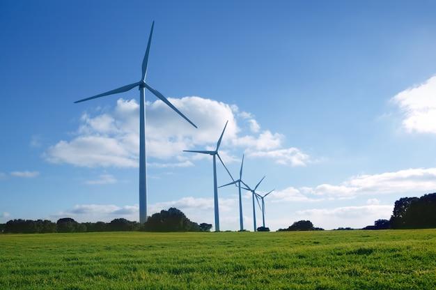 Moinhos de vento de energia elétrica ecológica em prado