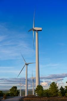 Moinhos de vento energia elétrica verde no céu azul de montanha de pinho