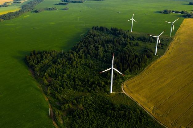 Moinhos de vento nas florestas e campos
