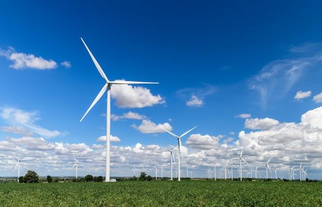 Moinhos de vento para produção de energia elétrica no campo de mandioca no céu azul