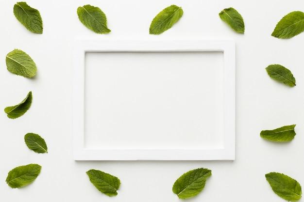 Moldura branca plana com folhas