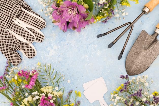 Moldura circular de vista superior com ferramentas de jardinagem