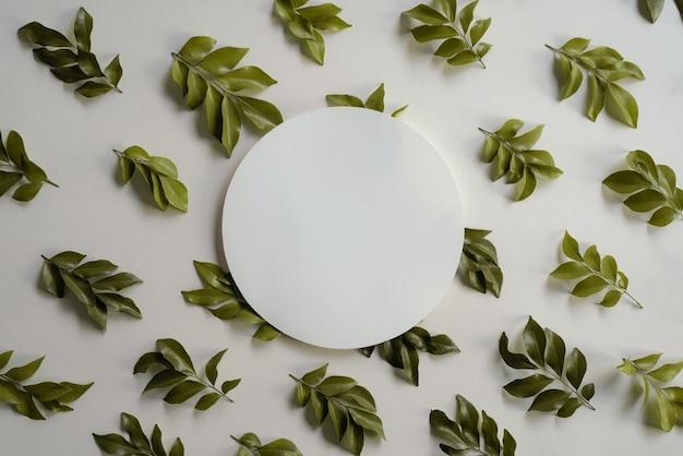 Moldura circular feita de folhas tropicais e folhas isoladas em um fundo branco, vista de cima plana