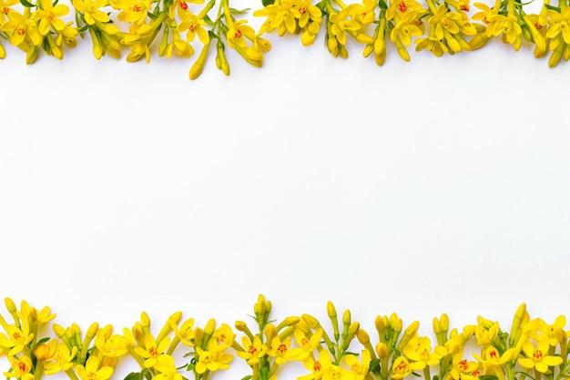 Moldura composta por vários ramos pequenos com flores amarelas da primavera em um fundo branco