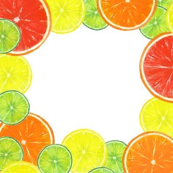 Moldura de fatias de frutas cítricas desenhada à mão em aquarela, toranja, laranja, lima, limão