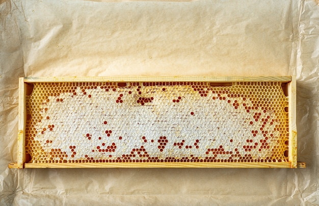 Moldura de madeira de favos de mel no fundo de papel pardo, vista superior