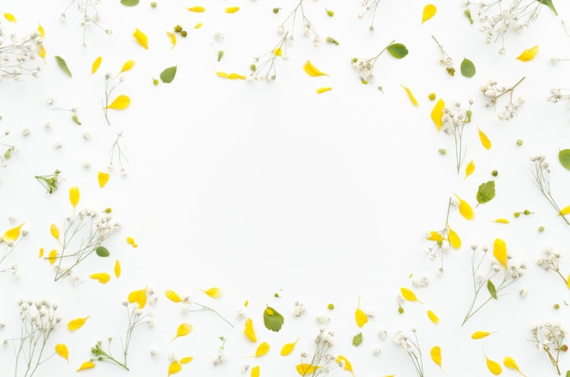 Moldura decorativa de flores