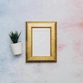 Moldura dourada com cacto sobre superfície aquarela