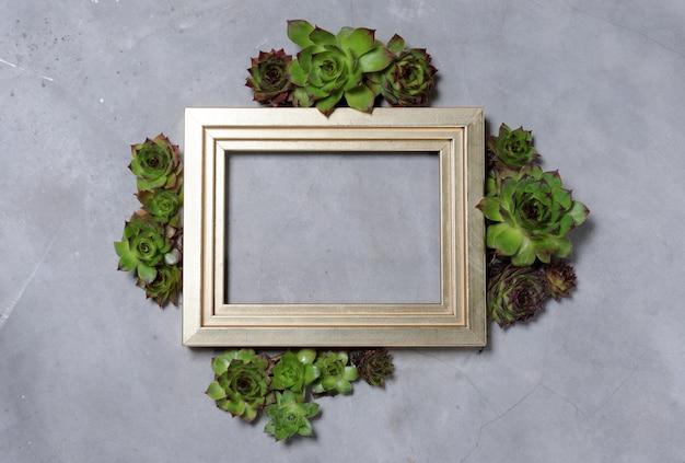 Moldura dourada com plantas suculentas