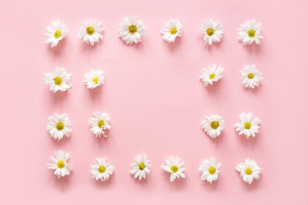 Moldura feita de botões de flores brancas sobre fundo rosa. camada plana, vista superior. conceito de blog da primavera /