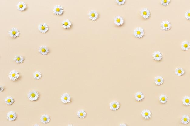 Moldura feita de várias flores de camomila em um fundo bege. camada plana, vista superior, espaço de cópia. margarida em padrão de forma de círculo. plano de verão, primavera e verão, com flores de camomila