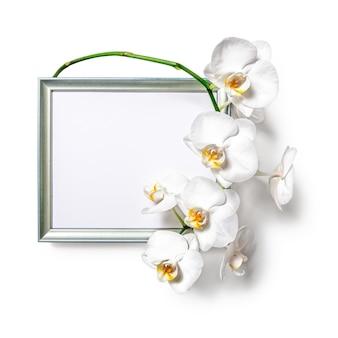Moldura fotográfica com flores de orquídea brancas isoladas no fundo branco