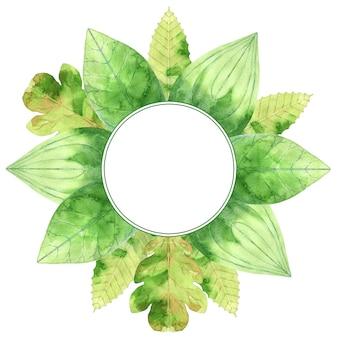 Moldura redonda com folhas verdes em aquarela