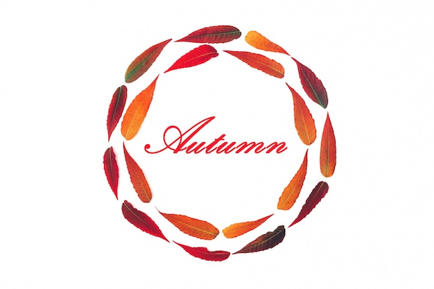 Moldura redonda de folhas de outono brilhantes isoladas no fundo branco com a inscrição outono vista superior plana lay