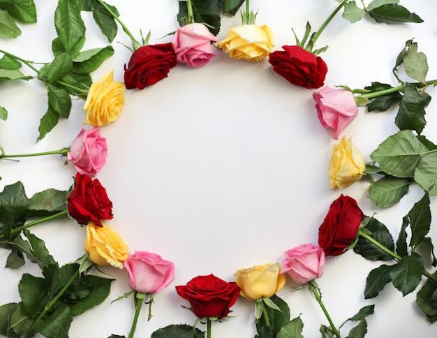 Moldura redonda de rosas amarelas, vermelhas e cor de rosa. vista do topo