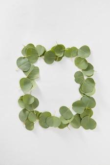 Moldura retangular criativa feita à mão de folhas perenes naturais da planta de eucalipto em uma parede cinza clara com espaço de cópia. postura plana.