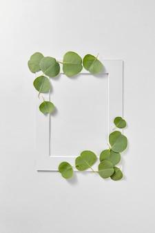 Moldura retangular decorativa feita à mão de folhas verdes naturais de eucalipto sobre um fundo cinza claro com espaço de cópia. postura plana.