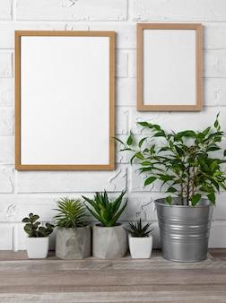 Molduras em vasos de flores e paredes