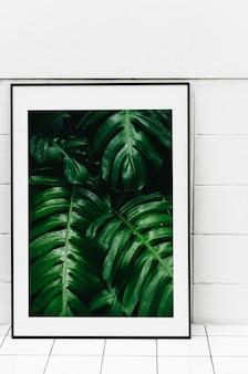 Molduras para fotos de folhas de plantas