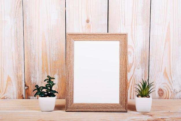 Molduras para fotos em branco com duas plantas suculentas além de mesa de madeira