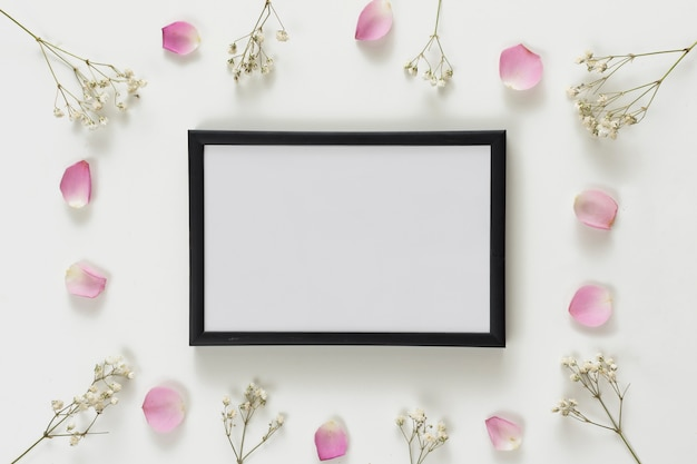 Molduras para fotos entre conjunto de pétalas de rosas frescas e galhos de plantas