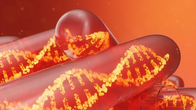 Molécula de dna de ilustração 3d, sua estrutura. genoma humano do conceito
