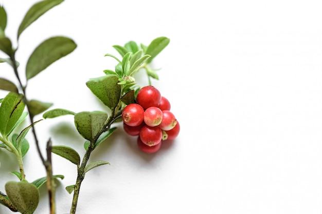 Molho de mirtilo com frutas suculentas saborosas vermelhas no branco