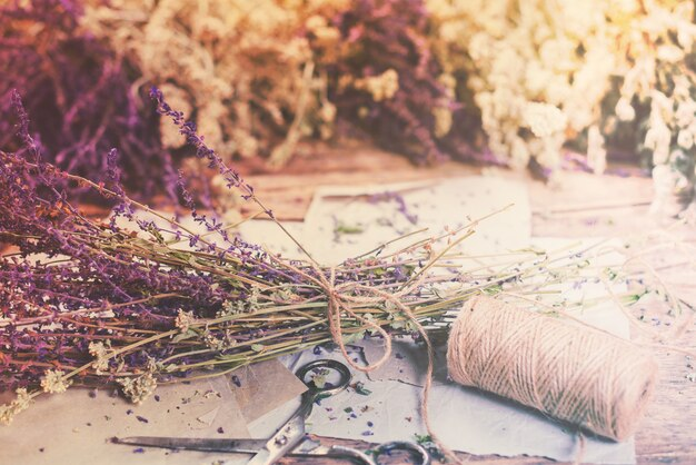 Molho seco ervas sábio urtiga yarrow hortelã diferente