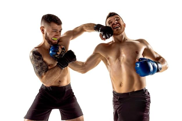 Momento de captura dois lutadores profissionais posando isolados no fundo branco do estúdio